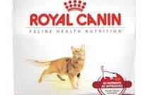 Royal-Canin-Gatos-fit-32
